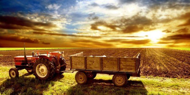 agricultura 03