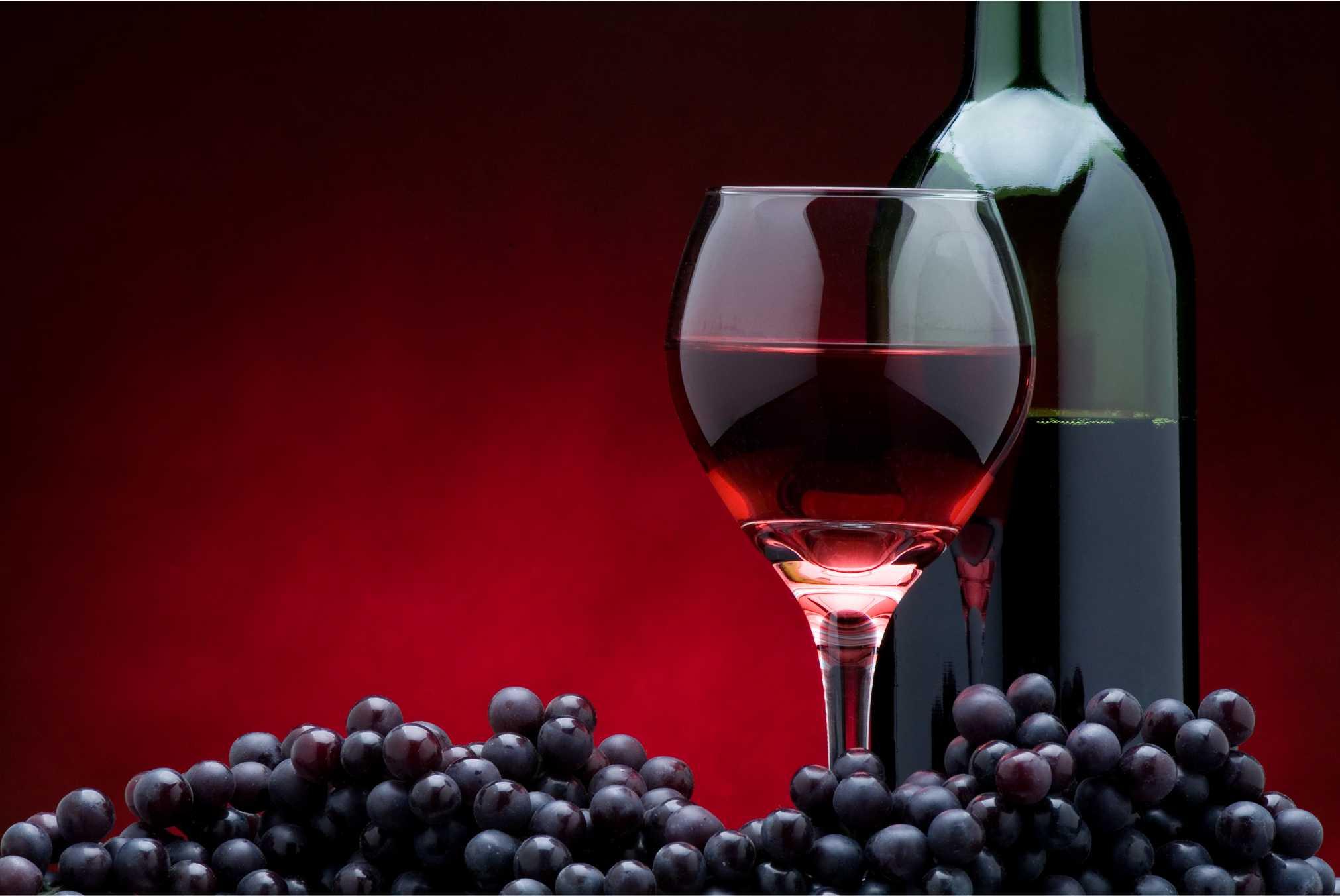 vinhos 04