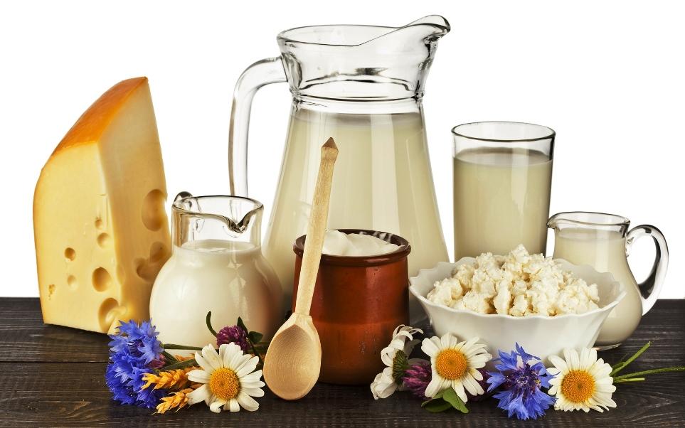 lacticinios 02 leite