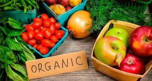agricultura biológica 001