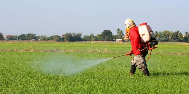 pesticidas 004