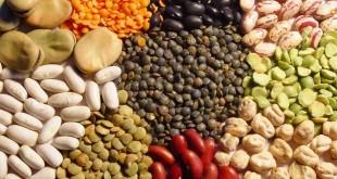 legumes secos