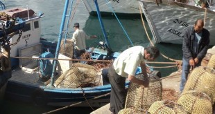 pescas 07