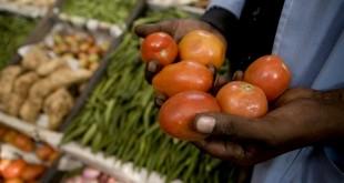 agricultura moçambique 02