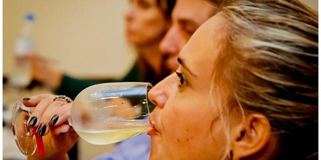 prova de vinhos 02
