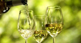 vinho verde 01