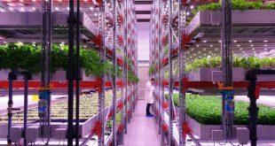 CoolFarm agricultura