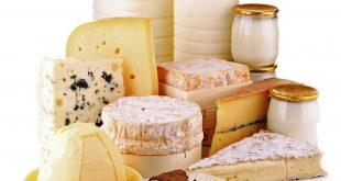 leite lacticinios queijo 01