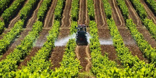 Phosphorland agricultura