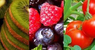 frutos e legumes espaço visual