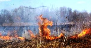 incendio agricola 01