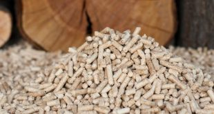 biomassa 01
