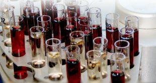 vinho-analises