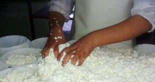 lactimercados-queijo