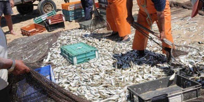 Pesca Xavega 01