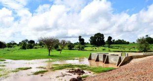agricultura água