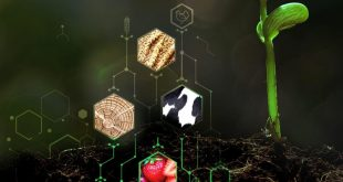 agricultura CA premio empreendedorismo inovaçao