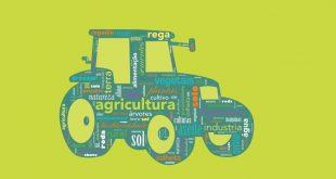 concurso jovens CAP agricultores