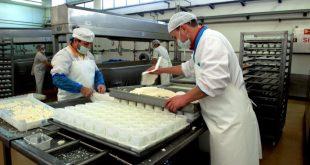 industria agroalimentar queijo