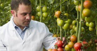 agricultura inovação 06
