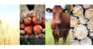 agricultura inovisa CA