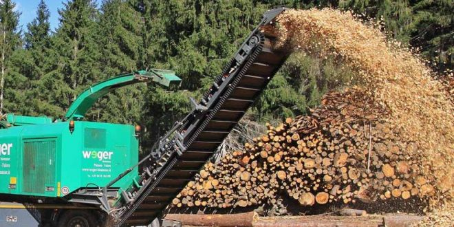 biomassa 05
