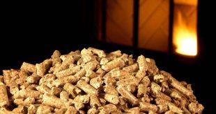 biomassa Pellets-5