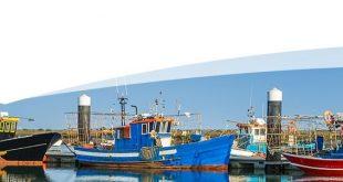 pescas atlantico