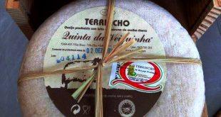 queijo TerrinchoDOP