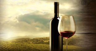 vinho banner1