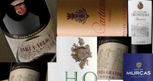 vinhos logotipos
