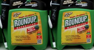 Roundup glifosato monsanto