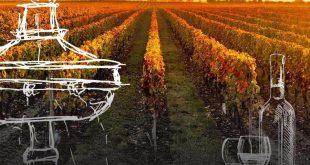 evora wine