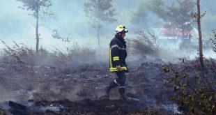 floresta incendios 77