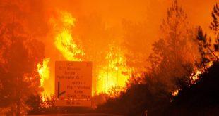 incêndios 09